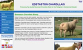 Edstaston Charollais Website
